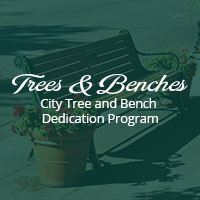 Tree  & Bench Dedication