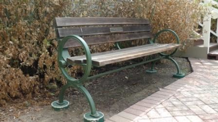Wooden bench with metal plaque in the middle